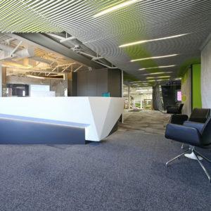 Interior Buildout